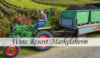 Wine Resort Markelsheim