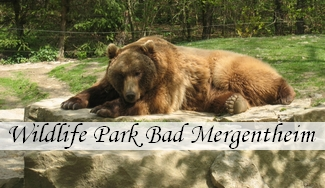 Wildlife Park Bad Mergentheim
